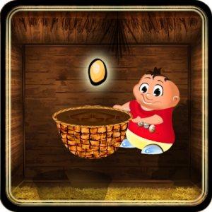 Chicken Egg Catcher